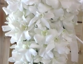 662-270x210 זר כלה - תפרחות סחלב אמה לבן