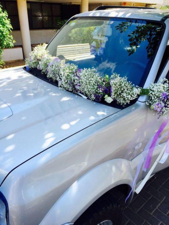 unnamed-4-570x760 קישוט לרכב חתן כלה בתפרחות גיבסנית וליזיאנטוס